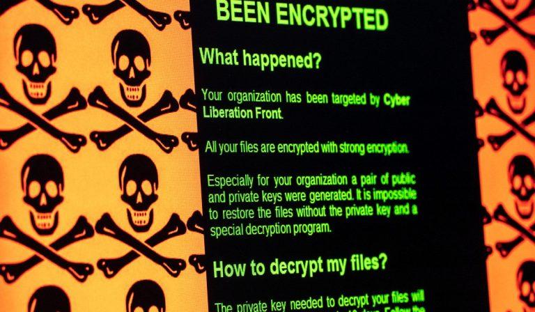 Coronavirus, Interpol avverte di attacchi hacker