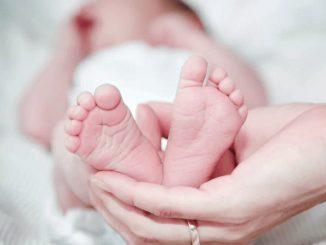 coronavirus neonato