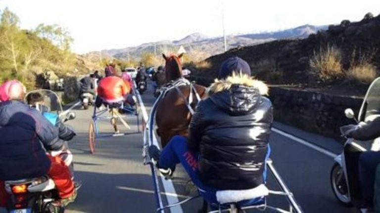 coronavirus-sora-corsa-clandestina-cavalli