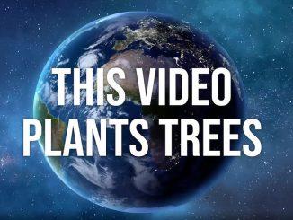 Treedom: piantare alberi da casa durante l'Earth Day 2020