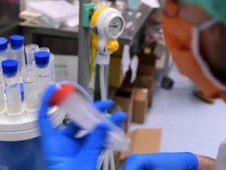 coronavirus decessi