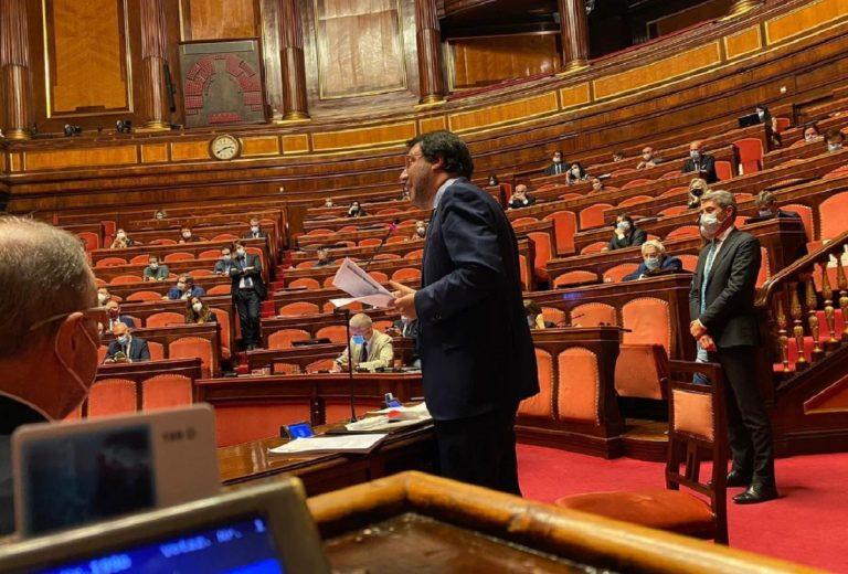 salvini intervento senato