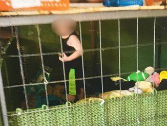 bambino-chiuso-gabbia