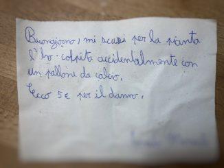 Bimbo di 11 anni rompe una pianta e scrive un biglietto al vicino