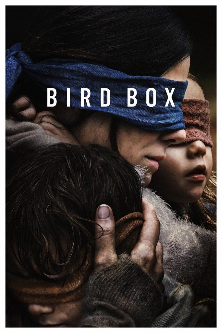 birdbox recensione 768x1152