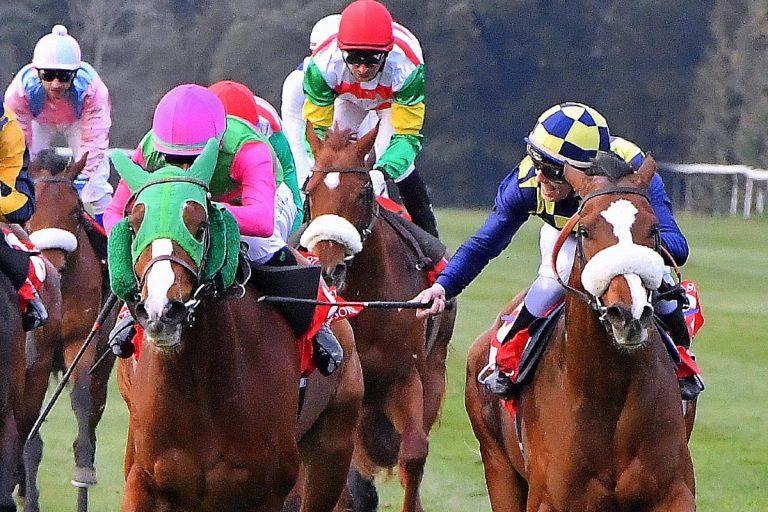 sport-cavallo-elenco-completo