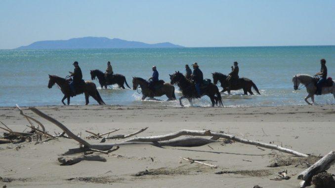 sport-cavallo-squadre