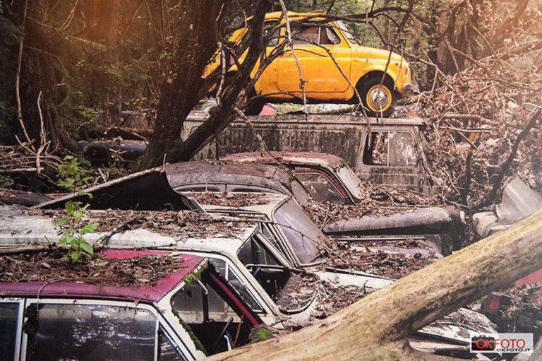 cimitero auto vintage notizie it 768x511