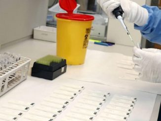 coronavirus isolati super anticorpi