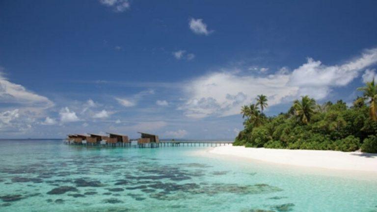 maldive 768x432