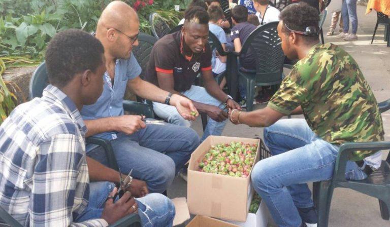 Modifica al sistema dell'accoglienza degli immigrati in Italia