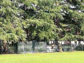 I 30 migranti 'depositati' sul pullman a Udine