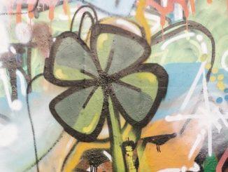 disegnare fiori sulle svastiche è reato