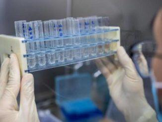Il vaccino covid di Oxford non protegge