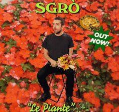 Sgrò le piante
