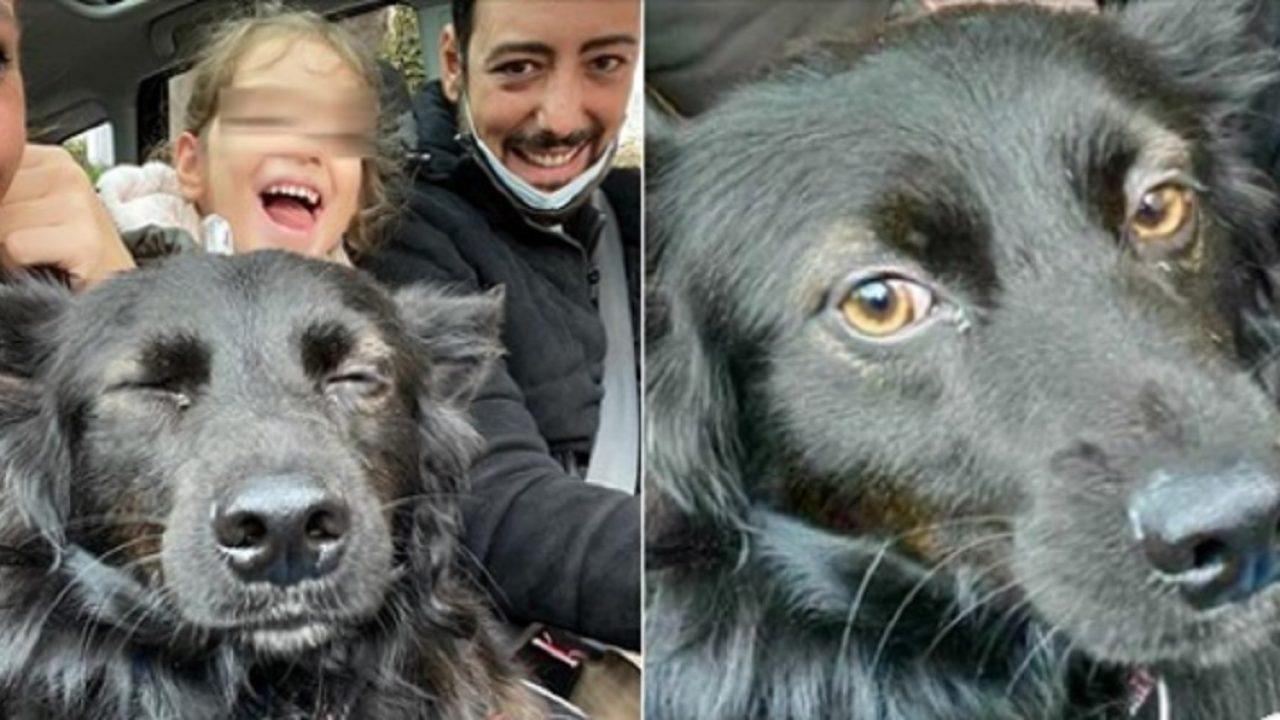 Ciro Priello adotta Nerino, maltrattato dal proprietario senzatetto