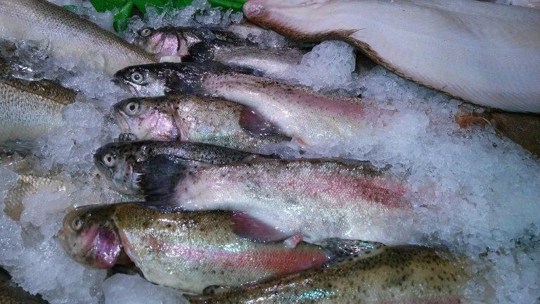 coronavirus sul pesce surgelato