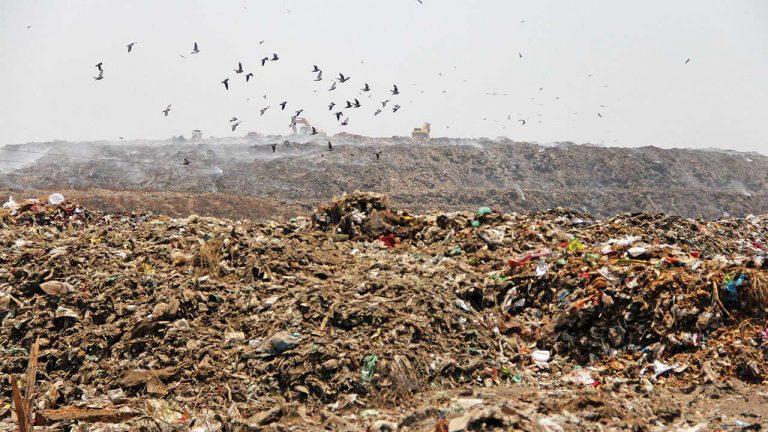 Travolta da montagna di rifiuti: morta la 12enne Neha Vasava