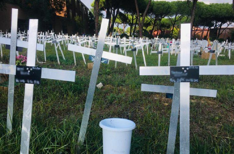 Concorso medici non obiettori roma