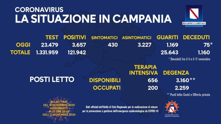 campania 14 768x432