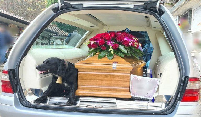 Cane segue la bara del suo padrone, durante il funerale