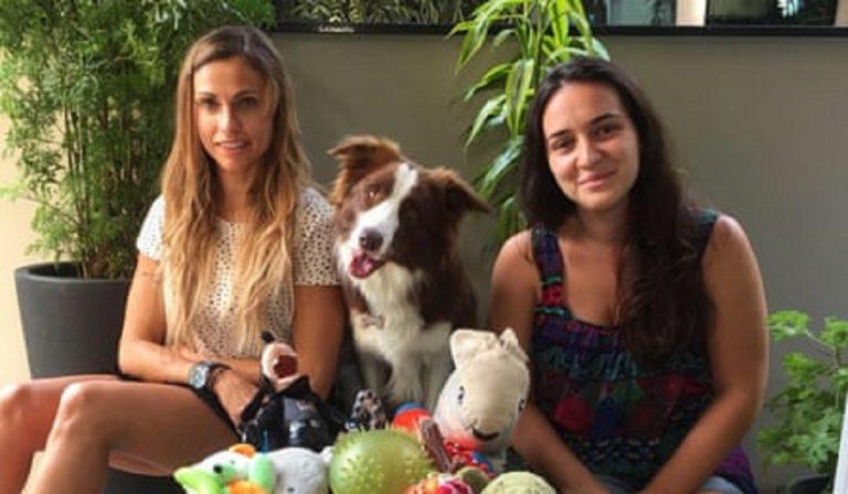 Genius Dog Challenge, talent a quattro zampe