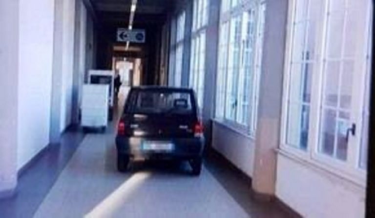 panda corridoi ospedale livorno