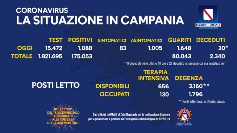 campania 11 768x432