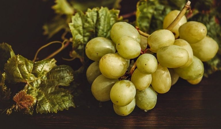 capodanno acini d'uva fortuna