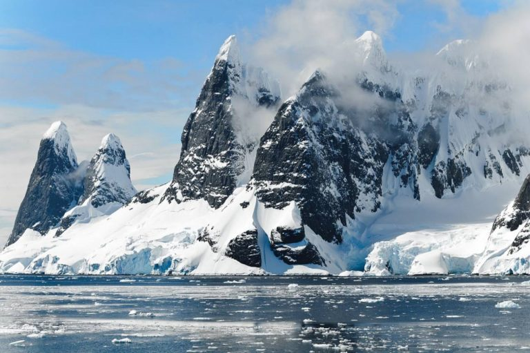 Coronavirus in Antartide