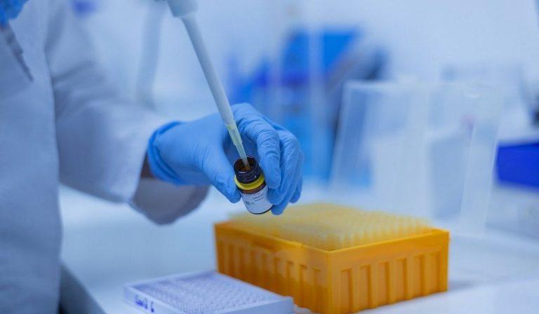 coronavirus nuova variante nigeria