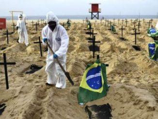 covid casi di reinfezione in brasile
