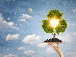 """Sostenibilità e territori, Asvis: """"Agenda 2030 riferimento strategico"""""""