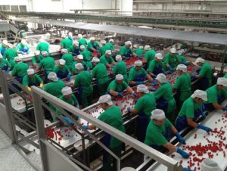 Mutti investe 18 mln per stabilimento di Salerno
