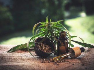 Le mie esperienze con la cannabis legale