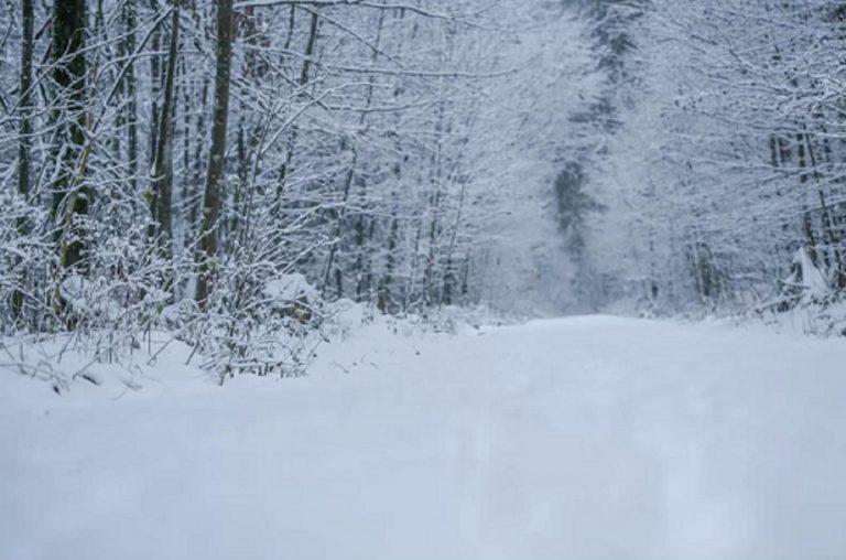 Previsioni meteo: ciclone in atto e nevicate in pianura