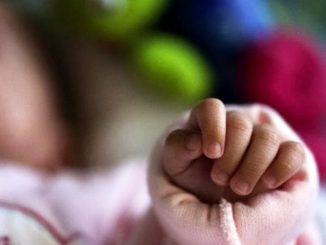 neonato febbre