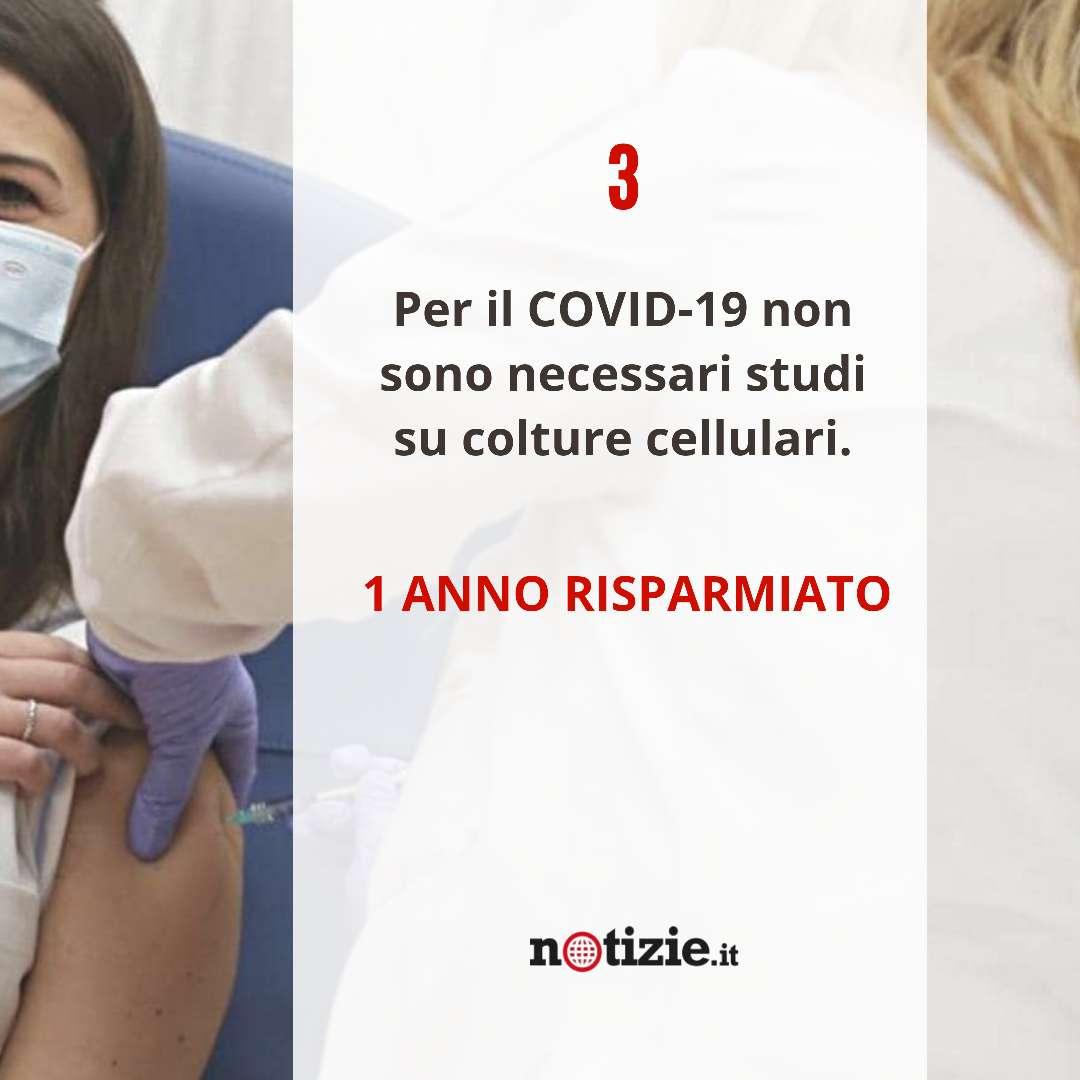 vaccini 3