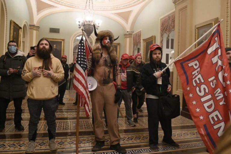chi erano manifestanti pro Trump