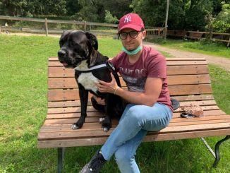 Dissenteria del cane, la storia di Vlad e Diesel