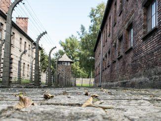 Olocausto: le vittime dimenticate