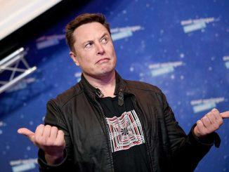 Elon Musk installa un chip nel cervello di una scimmia