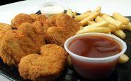 Oil Free Fryer: recensione sulla migliore friggitrice ad aria