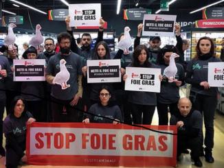 stop foie gras