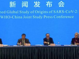 indagine Oms Cina origine covid