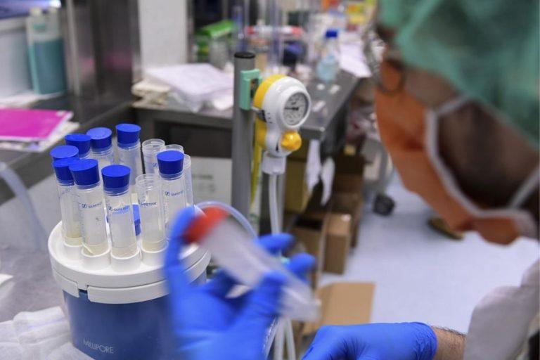 Rottapharm-Takis sperimentazione vaccino