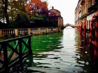 Dalla laguna di Venezia spunta un cadavere