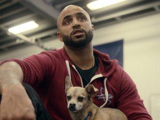 Dog Trainer – Scuola per cani