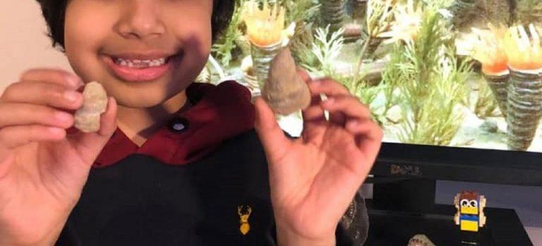 Scava in giardino e trova un fossile di 488 milioni di anni
