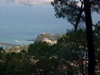 Splendido scorcio del Bosco della Maddalena